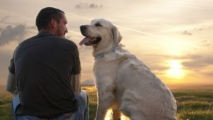 How to Cope With the Grief of Pet Loss