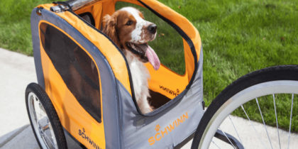 Dog Carrier: Steps to Take When Bringing Your Dog for a Long Journey