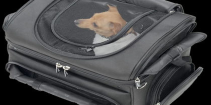 Dog Carriers & Travel Bags - They Are Not Silly Sounding
