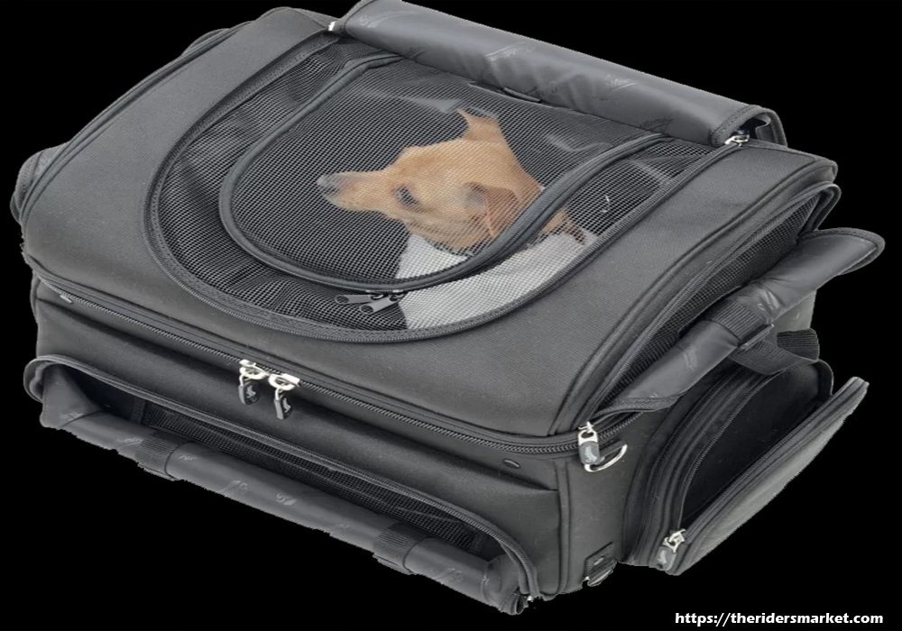 Dog Carriers & Travel Bags – They Are Not Silly Sounding