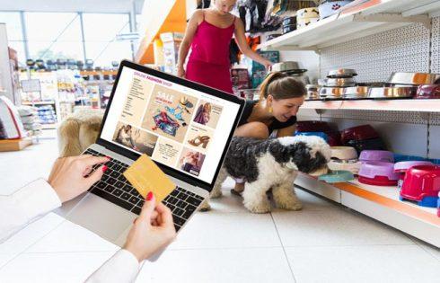 Begin a web-based Enterprise - Open a web-based Pet Store Internet site